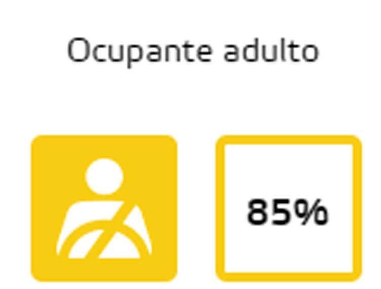 pruebas-euro-ncap-porsche-taycan_pasajeros-adultos
