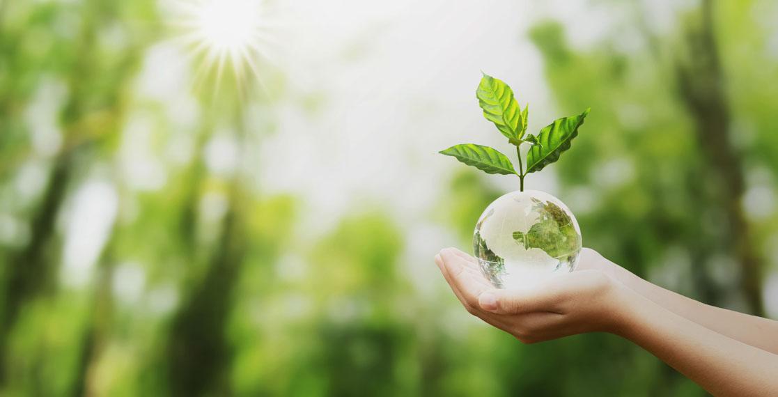 mano-sosteniendo-bola-mundo-planta-sostenibilidad