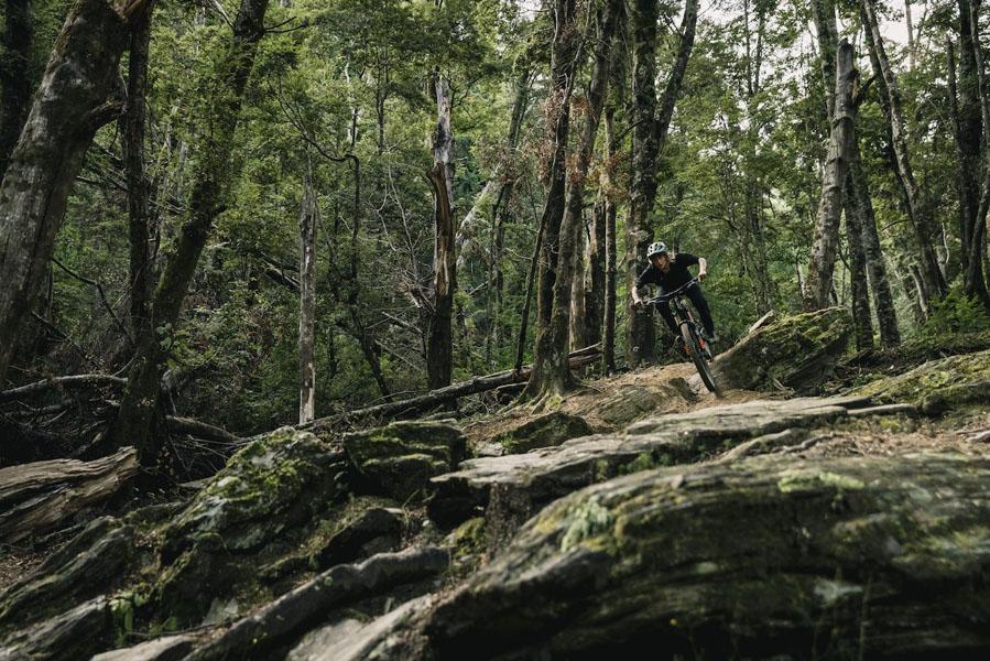 Specialized-Kenevo-SL_bicicleta-electrica-MTB_sendero