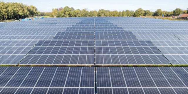 Vattenfall-Symbizon-parque-solar-combinacion-cultivos