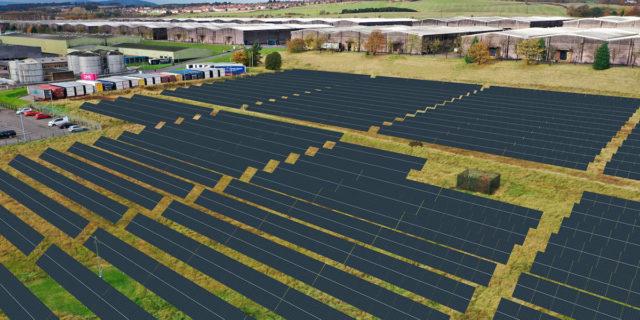 Proyecto-granja-solar-Diageo