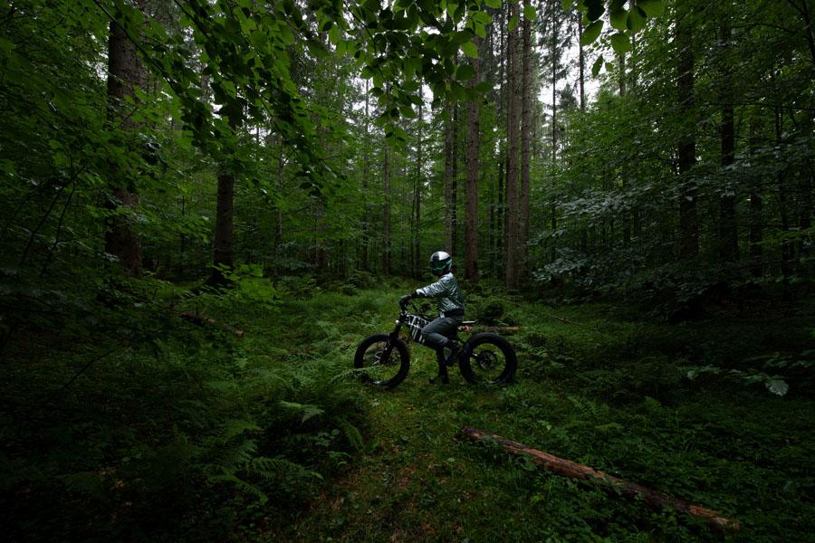 BMW-Vision-AMBY_concept-ciclomotor-electrico_bosque